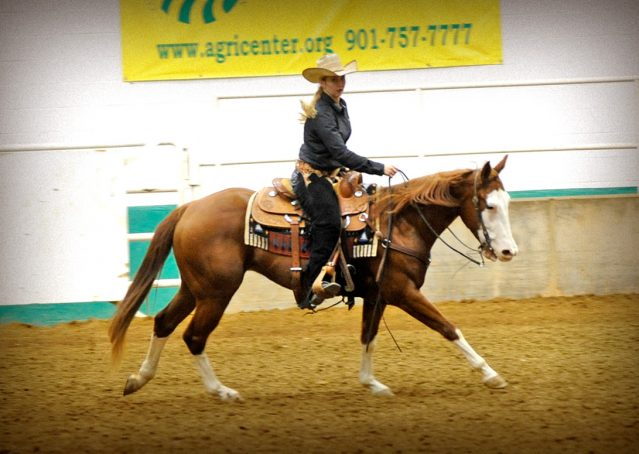 002-Indie-Sorrel-AQHA-reining-horse-for-sale