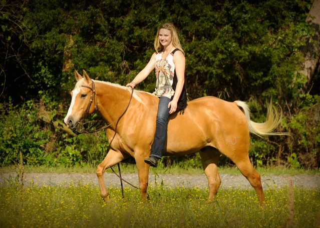 002-Peaches-Palomino-AQHA-Gelding-For-Sale
