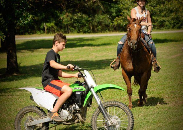004-Clark-AQHA-horse-for-sale
