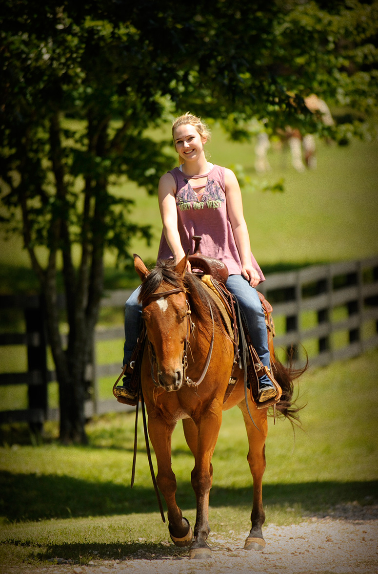 004-Dually2-Bay-AQHA-Gelding-For-Sale