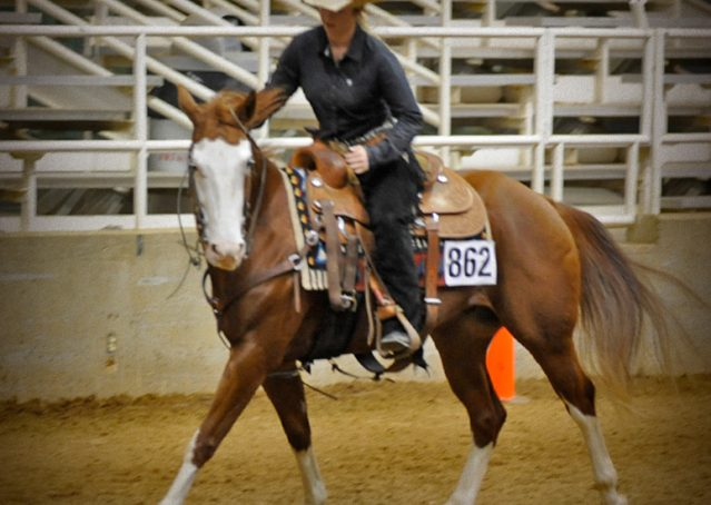 004-Indie-Sorrel-AQHA-reining-horse-for-sale