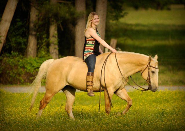 005-Cisco-Palomino-Quarter-Horse-Gelding