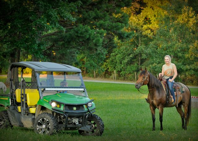 005-Jasper-Bay-Roan-Quarter-horse-gelding-for-sale