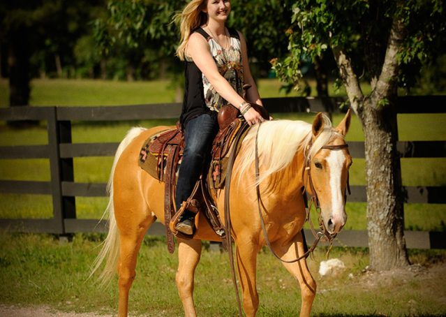 005-Peaches-Palomino-AQHA-Gelding-For-Sale