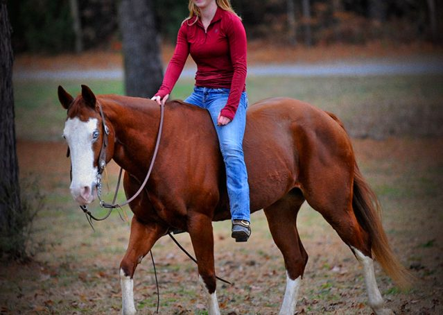 006-Indie-Sorrel-AQHA-reining-horse-for-sale