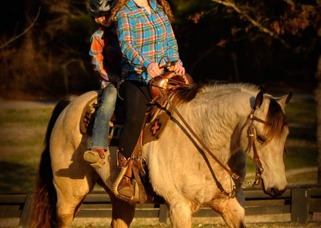 006-Kody-Buckskin-AQHA-Gelding-For-sale