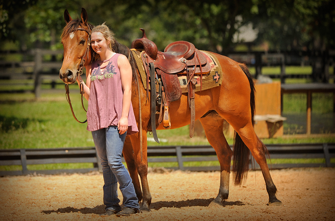 007-Dually2-Bay-AQHA-Gelding-For-Sale