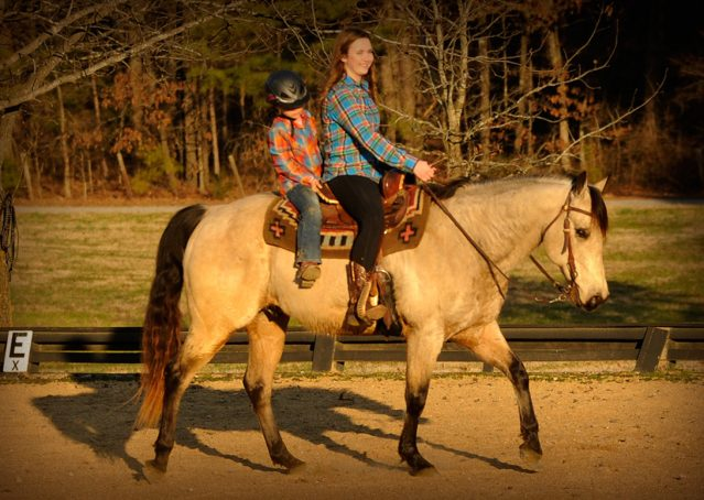 007-Kody-Buckskin-AQHA-Gelding-For-sale
