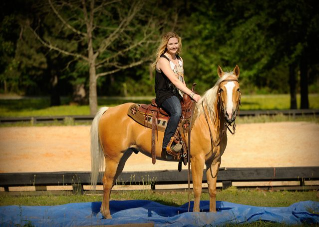 007-Peaches-Palomino-AQHA-Gelding-For-Sale