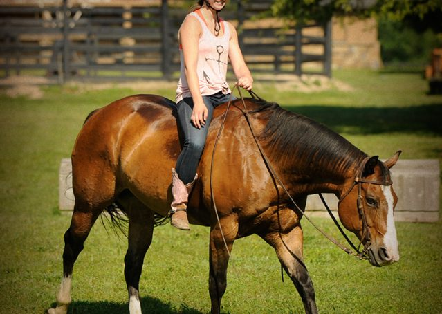 007-Romeo-APHA-for-sale
