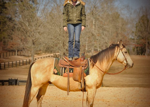 008-King-Buckskin-AQHA-Gelding-For-Sale