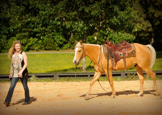 009-Peaches-Palomino-AQHA-Gelding-For-Sale