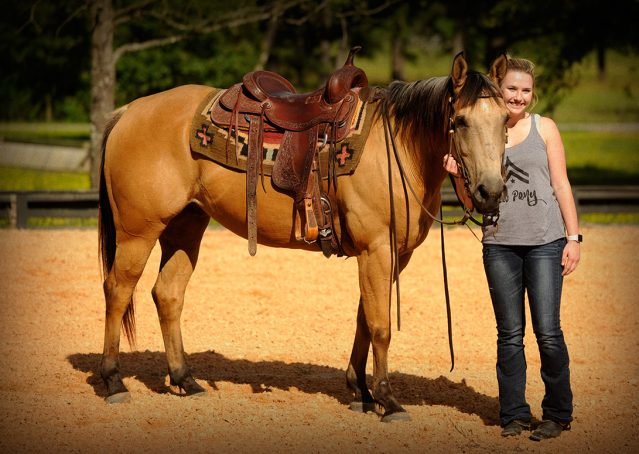 010-Jessie2-Buckskin-Gelding-For-Sale