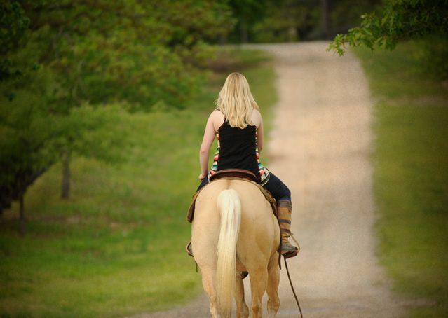 011-Cisco-Palomino-Quarter-Horse-Gelding