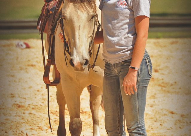 012-Dante-Buckskin-Quarter-Horse-Geldin-For-Sale