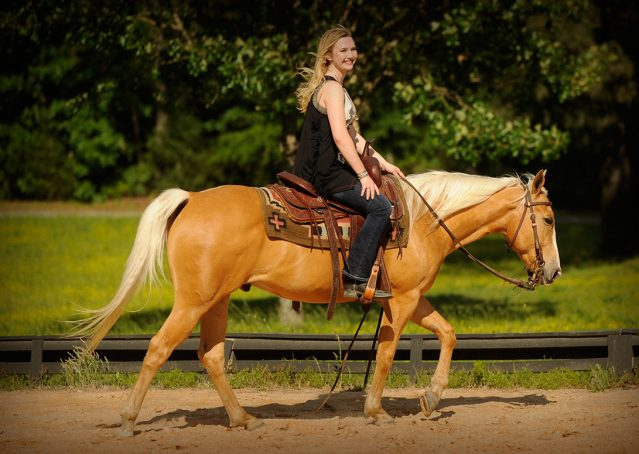012-Peaches-Palomino-AQHA-Gelding-For-Sale
