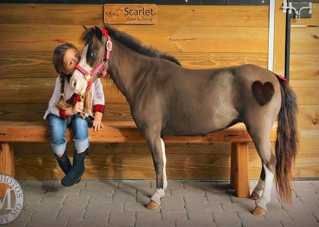 013-Scarlet-4