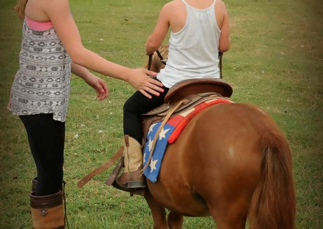 014-beginner-kids-riding-pony-for-sale-horse-of-my-dreams
