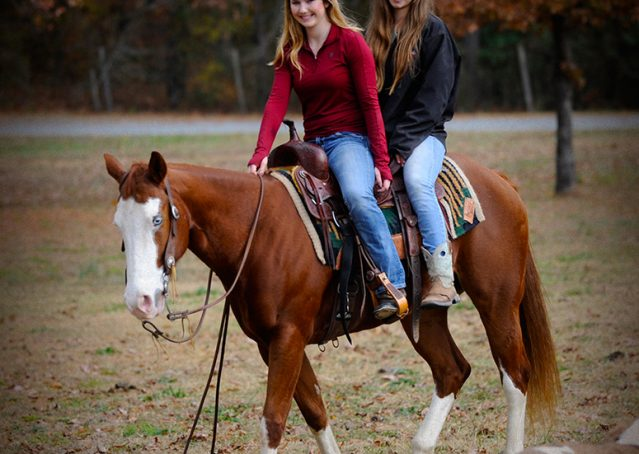 016-Indie-Sorrel-AQHA-reining-horse-for-sale