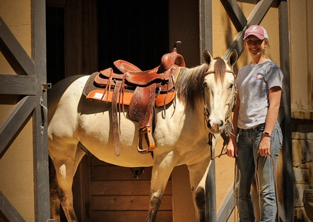 017-Dante-Buckskin-Quarter-Horse-Geldin-For-Sale