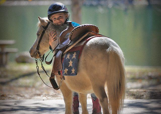 017-Drew-Paint-Mini-Pony-For-Sale