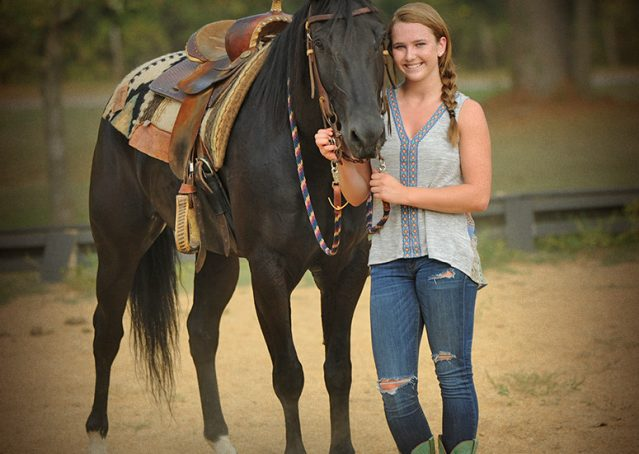 017-Hollywood-AQHA-gelding-for-sale