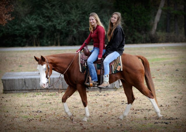 017-Indie-Sorrel-AQHA-reining-horse-for-sale