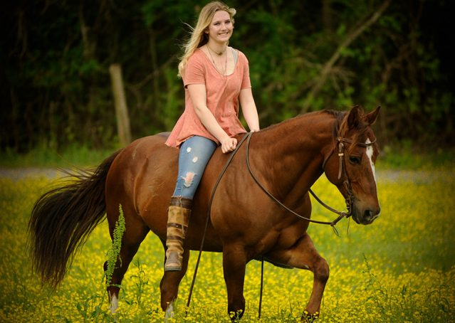 017-Jack2-Chestnut-AQHA-Gelding-For-Sale