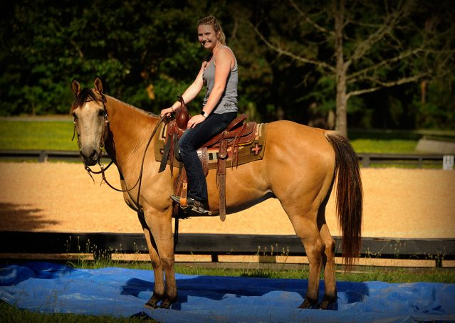 017-Jessie2-Buckskin-Gelding-For-Sale