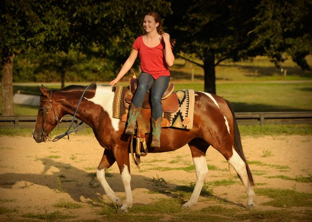 017-Lena-APHA-mare-for-sale