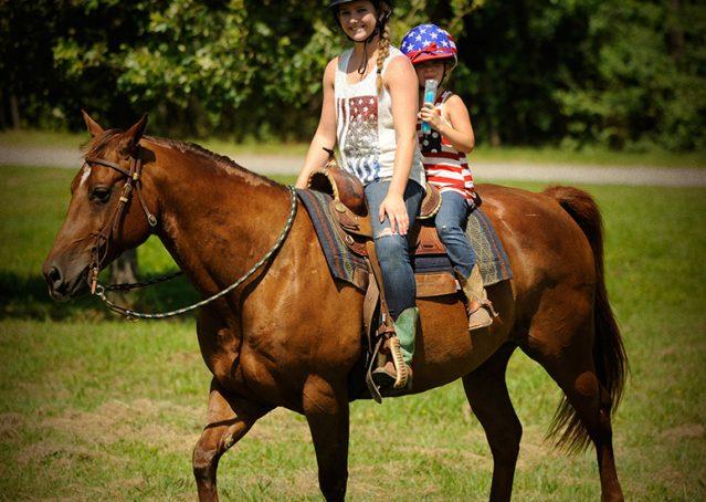 019-Clark-AQHA-horse-for-sale