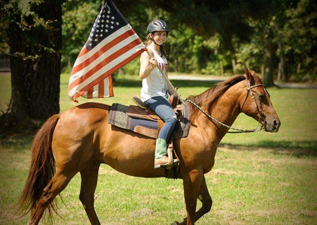 020-Clark-AQHA-horse-for-sale