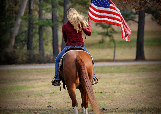 020-Indie-Sorrel-AQHA-reining-horse-for-sale