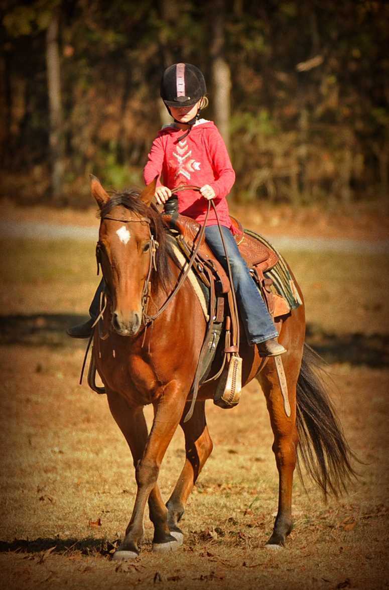 021-Dually2-Bay-AQHA-Gelding-For-Sale