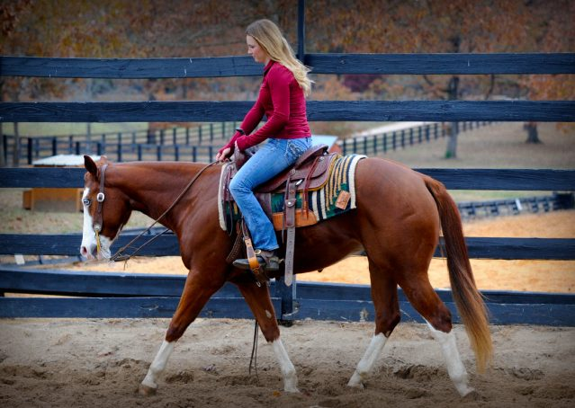 021-Indie-Sorrel-AQHA-reining-horse-for-sale