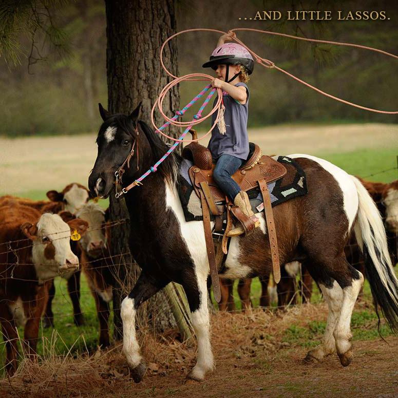 024-little-lassos