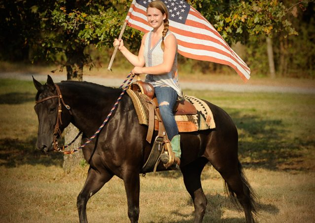026-Hollywood-AQHA-gelding-for-sale