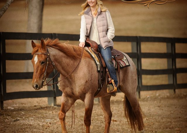 016-Pep-Red-Roan-AQHA-Gelding-For-Sale