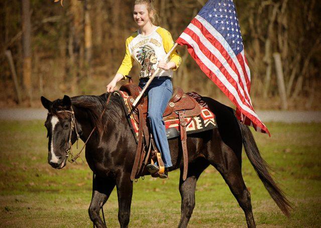 009-Coal-Black-Quarter-horse-gelding-for-sale