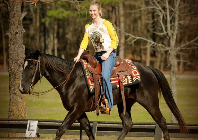012-Coal-Black-Quarter-horse-gelding-for-sale