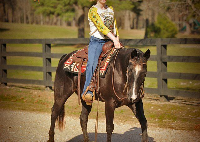 019-Coal-Black-Quarter-horse-gelding-for-sale