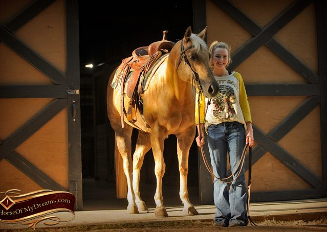 006-Angel-Palomino-Quarter-Horse-Mare-For-Sale
