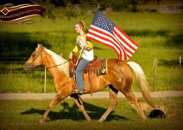 008-Angel-Palomino-Quarter-Horse-Mare-For-Sale