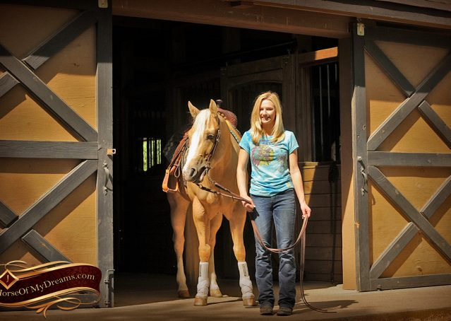 009-Chanel-Palomino-AQHA-Reining-mare-for-sale