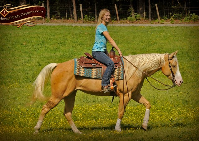 013-Chanel-Palomino-AQHA-Reining-mare-for-sale