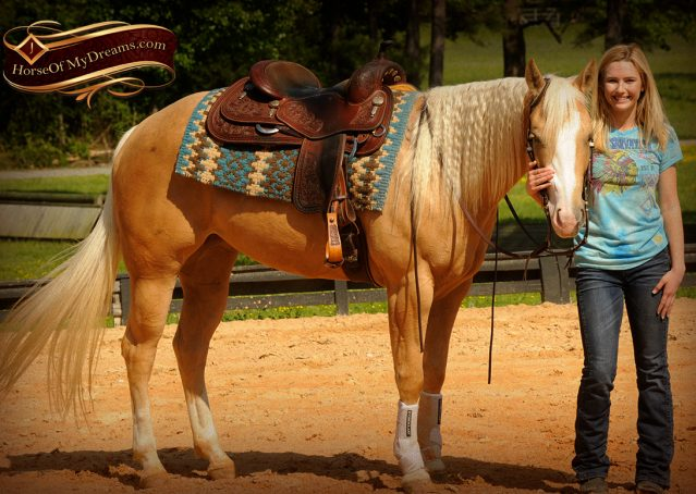 016-Chanel-Palomino-AQHA-Reining-mare-for-sale
