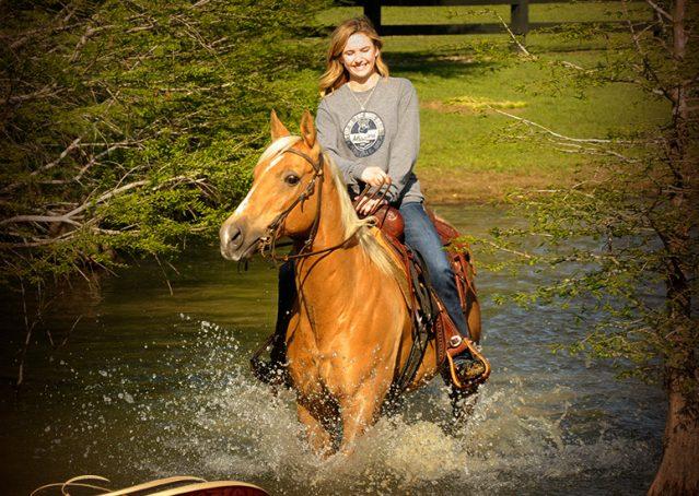 017-Regent-Palomino-Quarter-Horse-Gelding-For-Sale