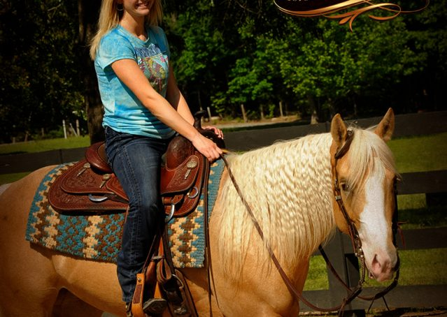 019-Chanel-Palomino-AQHA-Reining-mare-for-sale