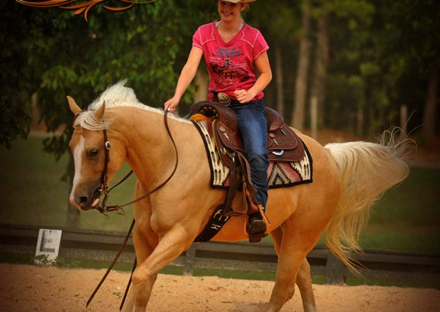 021-Chanel-Palomino-AQHA-Reining-mare-for-sale