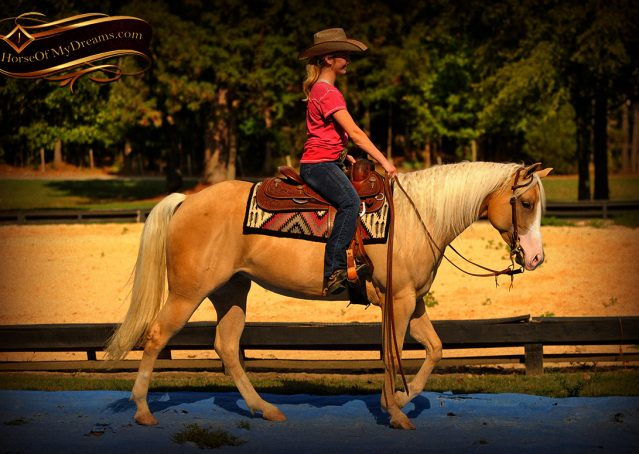 022-Chanel-Palomino-AQHA-Reining-mare-for-sale